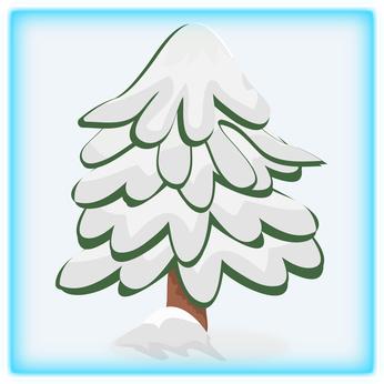 abete-bianco